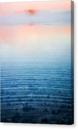 Pink Fog At Sunrise Canvas Print by Shelby  Young