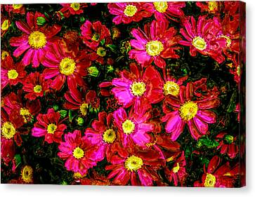 Pink Friends Canvas Print by Phill Petrovic