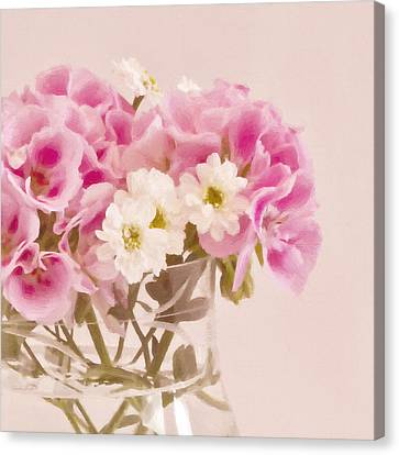 Pink Geraniums Canvas Print by Sandra Foster