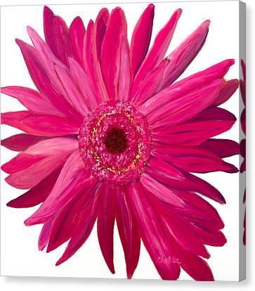 Pink Gerber Canvas Print by Chelle Fazal