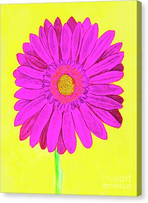 Pink Gerbera On Yellow, Watercolor Canvas Print