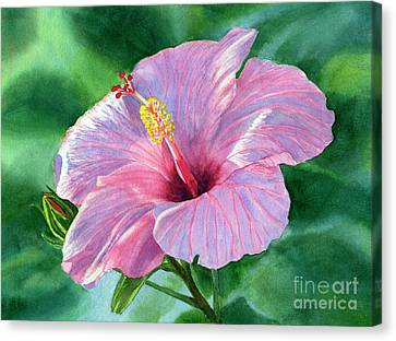 Pink Hibiscus Flower With Leafy Background Canvas Print by Sharon Freeman