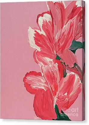 Canvas Print - Pink Hibiscus Flowers  by Karen Nicholson