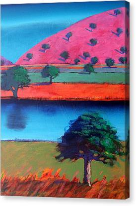 Pink Hill Two Canvas Print by Paul Powis