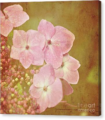 Canvas Print featuring the photograph Pink Hydrangeas by Lyn Randle