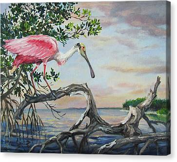 Pink Lady Canvas Print by Dianna  Willman