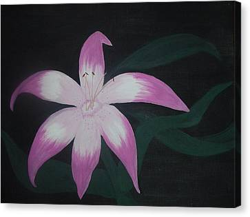Pink Lily Canvas Print by Melanie Blankenship