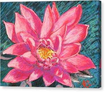 Soft Pastel Canvas Print - Pink Lotus by Abbie Groves