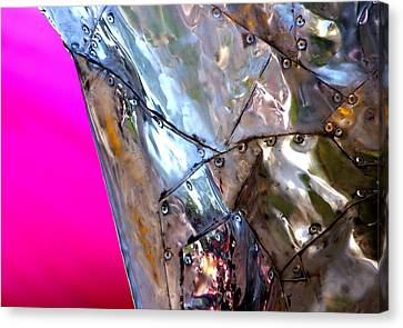 Canvas Print featuring the photograph Pink Lustre  by Prakash Ghai