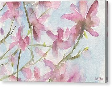 Pink Magnolias Blue Sky Canvas Print by Beverly Brown