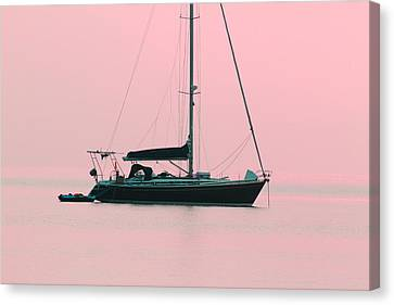 Canvas Print featuring the photograph Pink Mediterranean by Richard Patmore