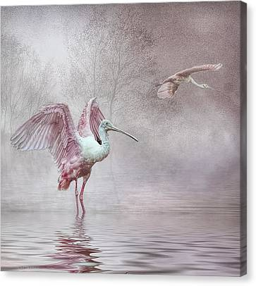 Pink Mist Canvas Print by Brian Tarr