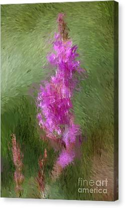 Pink Nature Abstract Canvas Print by David Lane