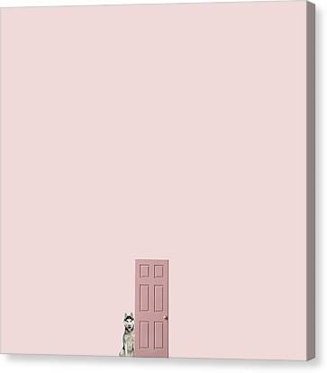 Pink On The Pink Canvas Print by Caterina Theoharidou