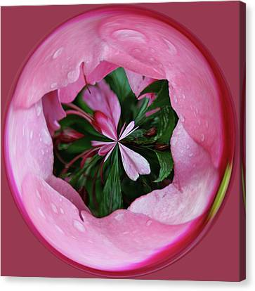 Canvas Print featuring the photograph Pink Orb by Bill Barber