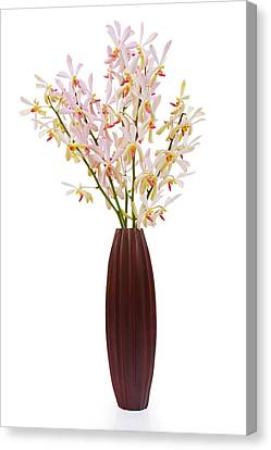 Pink Orchid In Wood Vase Canvas Print by Atiketta Sangasaeng