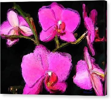 Pink Orchids Canvas Print by Dennis Lundell