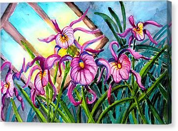 Pink Orchids Under Skylight Canvas Print by Helen Kern