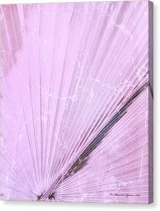 Pink Palm Frond Rh Canvas Print