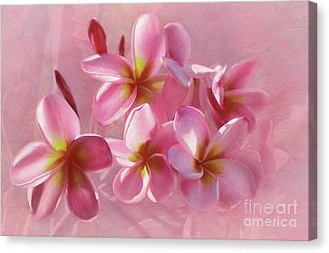 Canvas Print featuring the photograph Pink Plumeria Pastel By Kaye Menner by Kaye Menner