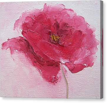 Pink Poppy Canvas Print by Jan Matson