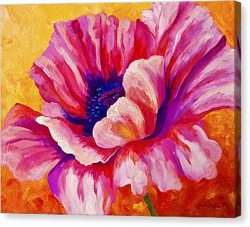 Pink Poppy Canvas Print by Marion Rose