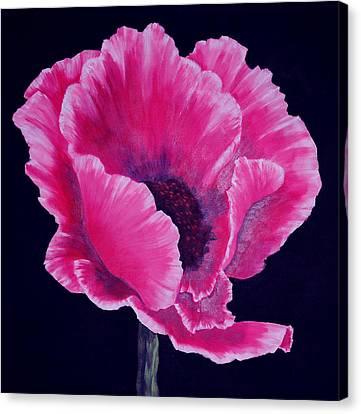 Pink Poppy Canvas Print by SueEllen Cowan