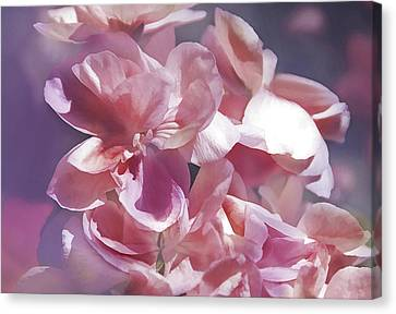 Canvas Print featuring the photograph Pink Punch by Elaine Manley