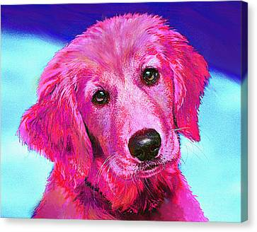 Pink Retriever Canvas Print by Jane Schnetlage