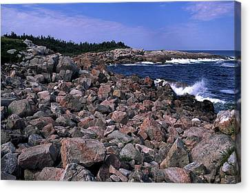 Pink Rock Shoreline Canvas Print by Sally Weigand