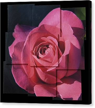 Pink Rose Photo Sculpture Canvas Print by Michael Bessler
