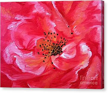 Pink Rose Canvas Print by Sheron Petrie