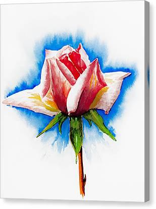 Pink Rose Canvas Print by Svetlana Sewell
