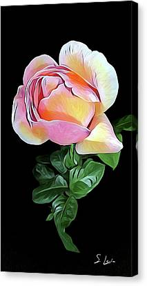 Cancer Resistant Pink Color 6692_2 Canvas Print by S Art