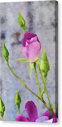 Pink Roses Artistic I Painterly Canvas Print by Linda Brody