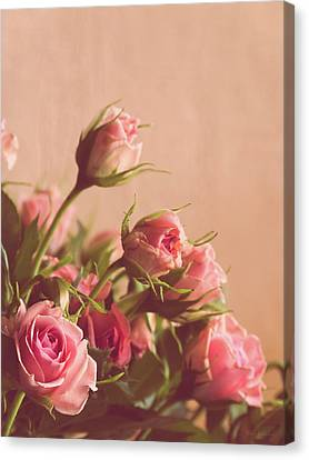 Pink Roses Canvas Print by Wim Lanclus