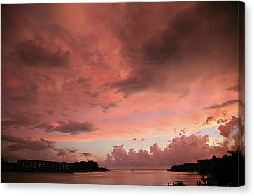 Pink Sky At Night Canvas Print