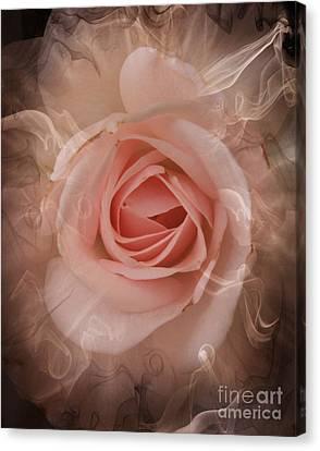 Pink Smokey Canvas Print