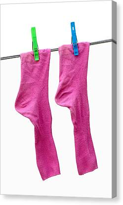 Pink Socks Canvas Print by Frank Tschakert