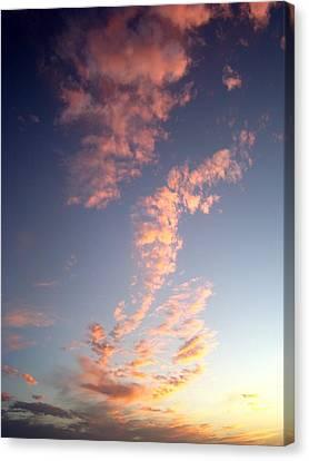 Pink Sunset One Canvas Print by Ana Villaronga
