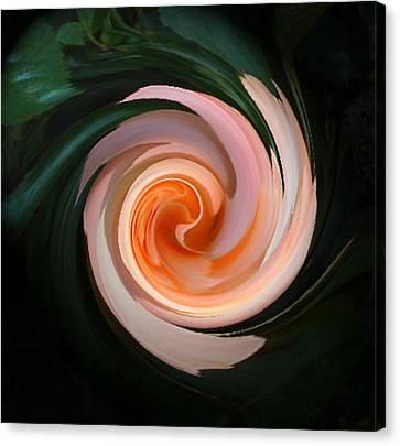 Pink Swirl Canvas Print by Barbara Oberholtzer