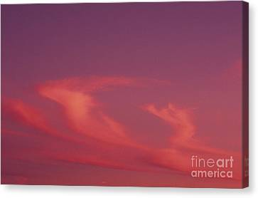 Pink Swirling Clouds Canvas Print by Carl Shaneff - Printscapes