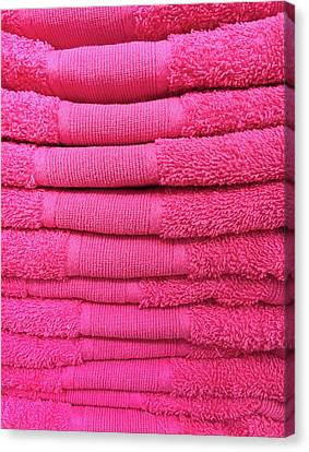 Pink Towels Canvas Print by Tom Gowanlock