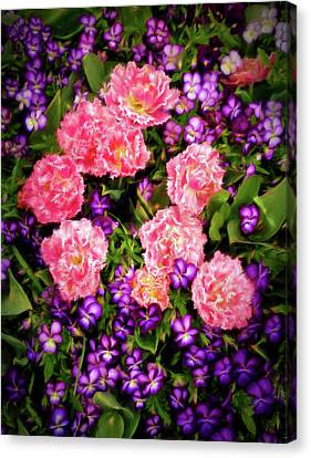 Canvas Print featuring the photograph Pink Tulips With Purple Flowers by James Steele