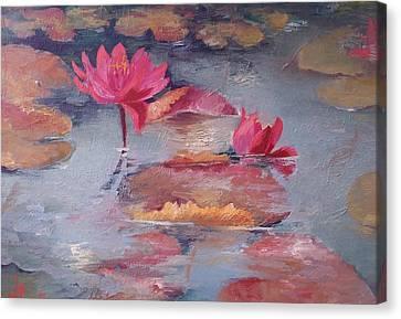 Pink Waterlilies Canvas Print by Vali Irina Ciobanu