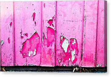 Cellphone Canvas Print - Pink Wood With Peeling Paint  by Tom Gowanlock