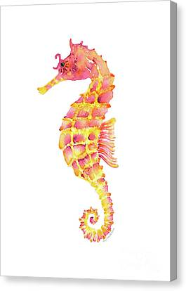 Pink Yellow Seahorse Canvas Print by Amy Kirkpatrick