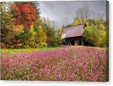 Pinks In The Pasture Canvas Print by Debra and Dave Vanderlaan