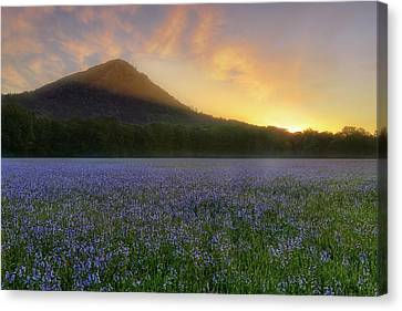 Pinnacle Mountain Sunrise - Arkansas - State Park Canvas Print by Jason Politte