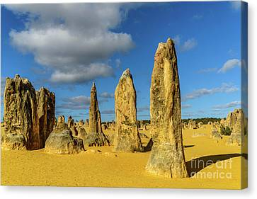 Pinnacles 6 Canvas Print